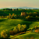 Meandering Through Tuscany, Italy